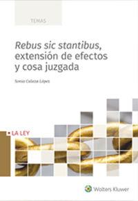 REBUS SIC STANTIBUS, EXTENSION DE EFECTOS Y COSA JUZGADA