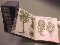 (2 Ed) (estuche) Herbarum, Arborum, Fruticum, Frumentorum Ac Leguminum. .. - Christian Egenolff (ed. )