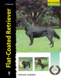 FLAT-COATED RETRIEVER (SERIE EXCELLENCE)