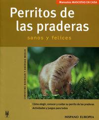 PERRITOS DE LAS PRADERAS - SANOS Y FELICES