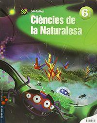 Ep 6 - Ciencies De La Naturalesa - Superpixepolis (val) - Paloma Mas Peinado