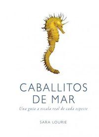 Caballitos De Mar - Sara Lourie