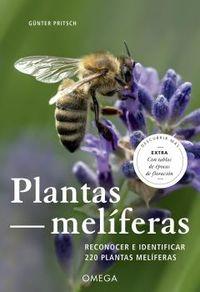 PLANTAS MELIFERAS