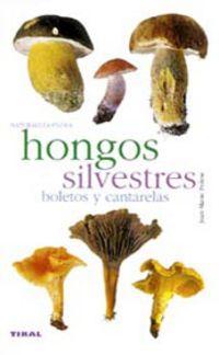 HONGOS SILVESTRES BOLETOS