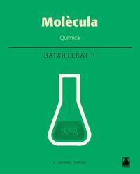 Batx 1 - Quimica (cat) - Molecula - Aureli Caamaño Ros / Damia Obach Muntada