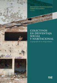 COLECTIVOS EN DESVENTAJA SOCIAL Y HABITACIONAL - LA GEOGRAFIA DE LAS DESIGUALDADES