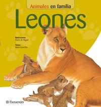 LEONES - ANIMALES EN FAMILIA
