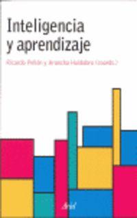 Inteligencia Y Aprendizaje - Ricardo  Pellon  /  Arancha  Huidobro