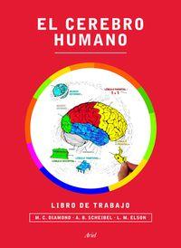 Cerebro Humano, El - Libro De Trabajo - Marian C. Diamond / A. B. Scheibel / Lawrence M. Elson