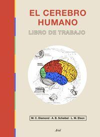 EL CEREBRO HUMANO - LIBRO DE TRABAJO
