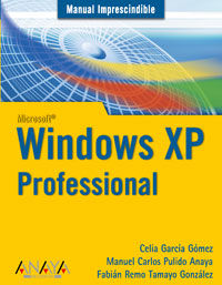 WINDOWS XP - PROFESSIONAL