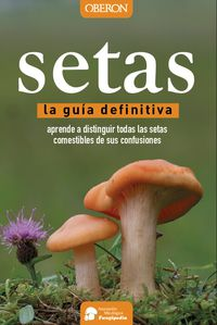 SETAS - LA GUIA DEFINITIVA
