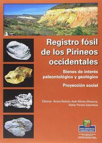 REGISTRO FOSIL DE LOS PIRINEOS OCCIDENTALES - BIENES DE INTERES PALEONTOLOGICO Y GEOLOGICO - PROYECCION SOCIAL