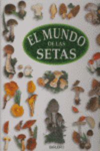 MUNDO DE LAS SETAS, EL