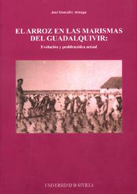 EL ARROZ EN LAS MARISMAS DEL GUADALQUIVIR: EVOLUCION Y PROBLEMATICA ACTUAL