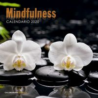 CALENDARIO 2020 - MINDFULNESS (305X305)