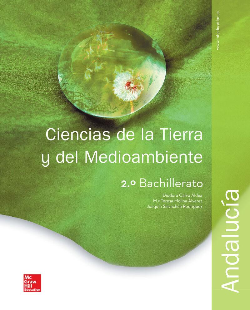 BACH 2 - CIENCIAS DE LA TIERRA Y MEDIOAMBIENTALES (AND)