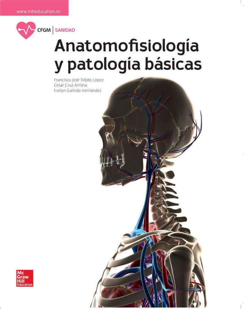 GM - ANATOMOFISIOLOGIA Y PATOLOGIAS BASICAS