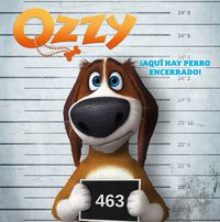 Ozzy - ¡corre, Ozzy, Corre! (storybook) - Aa. Vv.
