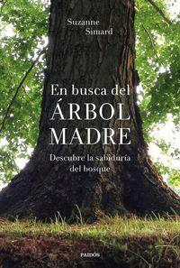 EN BUSCA DEL ARBOL MADRE - DESCUBRE LA SABIDURIA DEL BOSQUE
