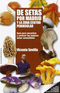 De Setas Por Madrid Y La Zona Centro Peninsular - Vicente Sevilla Hidalgo