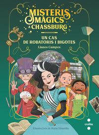 MISTERIS MAGICS A CHASSBURG 3 - UN CAS DE ROBATORIS I BIGOTIS