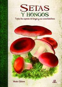 SETAS Y HONGOS - OBRAS SINGULARES
