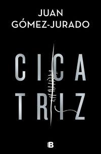 Cicatriz - Juan Gomez-Jurado