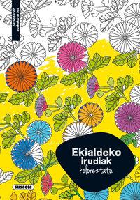 EKIALDEKO IRUDIAK - KOLOREZTATU