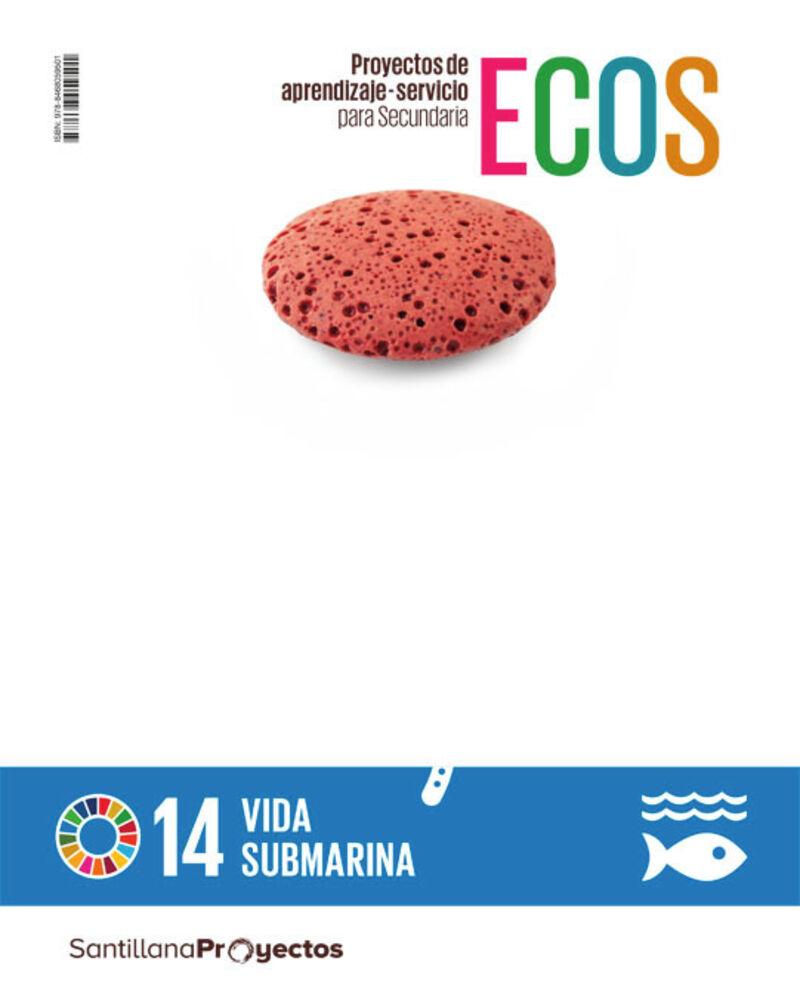 ESO 1 - CUAD ACCION VIDA SUBMARINA - ECOS