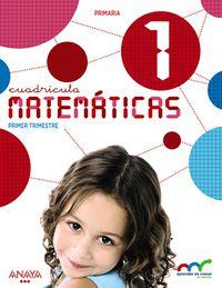 EP 1 - MATEMATICAS CUADRICULA (CYL)  - APRE. CREC. CONEX.