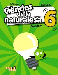 EP 6 - CIENCIES NATURALESA (BAL) QUAD - PEÇA A PEÇA