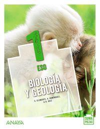 ESO 1 - BIOLOGIA Y GEOLOGIA (COLEG BILINGUES) (AND) - SUMA PIEZAS