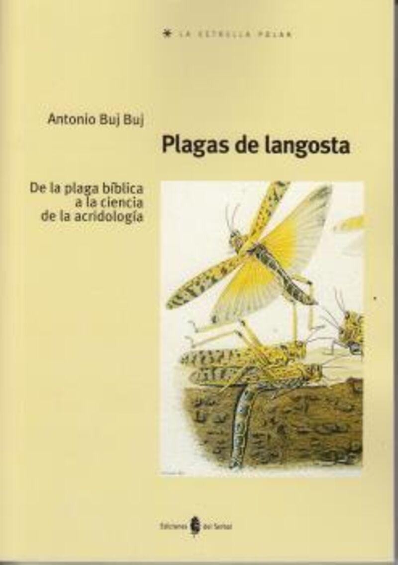 Plagas De Langosta - De La Plaga Biblica A La Ciencia De La Acridologia - Antonio Buj Buj