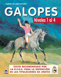 galopes - niveles 1 al 4 - curso de equitacion - Aa. Vv.