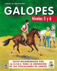 galopes - niveles 5 y 6 - curso de equitacion - Aa. Vv.