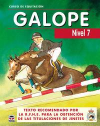 GALOPE - NIVEL 7 - CURSO DE EQUITACION