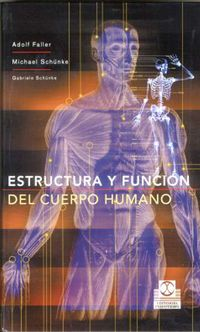 ESTRUCTURA Y FUNCION DEL CUERPO HUMANO