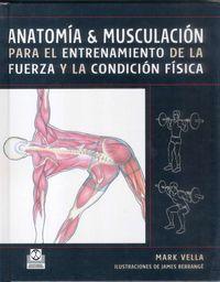 ANATOMIA Y MUSCULACION