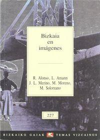 Bizkaia En Imagenes - Roman Alonso / Luis Amann / Jose Luis Merino / Mikel Moreno / Manuel Solorzano