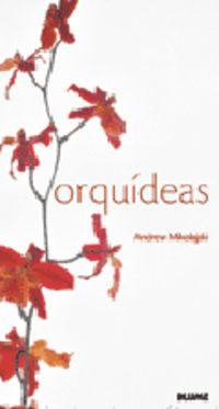 Orquideas - Andrew Mikolajski