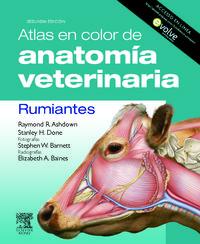 Atlas En Color De Anatomia Veterinaria - Rumiantes - R.  Ashdown  /  S. H.  Done
