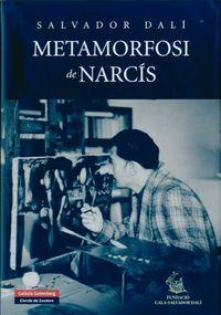 METAMORFOSI DE NARCIS