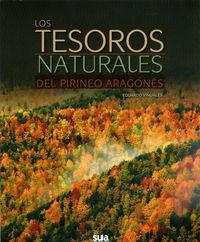Los tesoros del pirineo aragones - Eduardo Viñuales Cobos