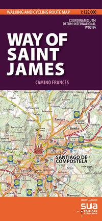 CAMINO DE SANTIAGO (ING) - MAPAS PIRENAICOS