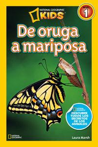 De Oruga A Mariposa - Lauraa Marsh