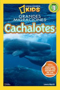 Cachalotes - Lauraa Marsh