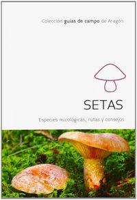 setas - especies micologicas - rutas y consejos - Carlos Sanchez / Gloria Algota