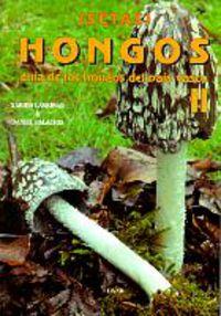 HONGOS II - GUIA DE LOS HONGOS DEL PAIS VASCO