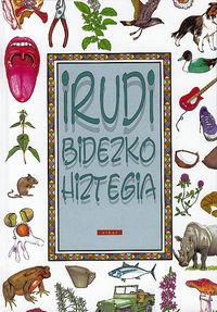 IRUDI BIDEZKO HIZTEGIA